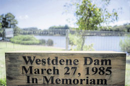 Surviving the Westdene Bus Disaster